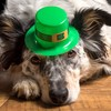 Fun poll: Is it really wrong to refer to 17 March as St Patty's Day?