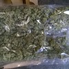 Man arrested as cannabis worth €450,000 is seized in Cork