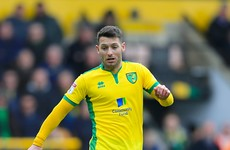 Worrying news for Ireland as Wes Hoolahan suffers injury