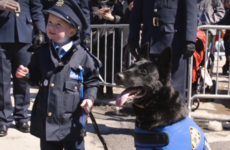 Four-year-old Irish garda with leukemia marches in New York St Patrick's Day parade