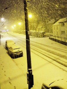 There's snow everywhere* and here are the pictures to prove it