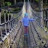 Ireland's longest rope bridge is opening in Kerry
