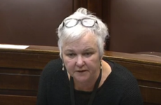 'You're trying to shut down discussion': Dáil suspended after Bríd Smith raises Halawa case