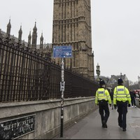 'I tried to get his heart beating': Wexford woman tried to save injured Westminster victim