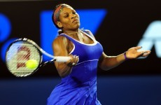 Insects, not ankle, bug Serena in Aussie comeback