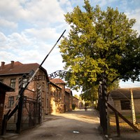Naked people slaughter a sheep at Auschwitz death camp