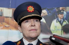 'It is inevitable we will identify more examples of bad practice': Garda Commissioner