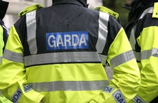 Gardaí appeal for information after 91-year-old woman struck by car