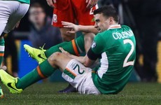 Shane Long talked Seamus Coleman through broken leg with pregnancy breathing techniques