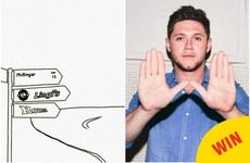 12 times Niall Horan was just SO Mullingar