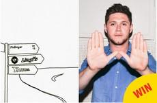 12 times Niall Horan was just SO Mullingar