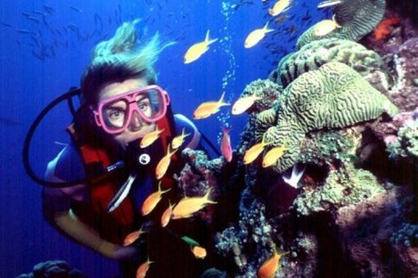 File photo of Great Barrier Reef