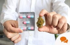 'HPRA guidance is biased. It didn't use expert advisors with practical experience of cannabis'