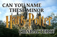 Can You Name These Minor Harry Potter Characters?