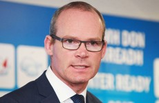 Simon Coveney says water committee seems to be moving in 'extremely worrying' direction