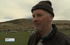 Last night's RTÉ News featured some of the strongest Kerry accents ever to grace Irish TV