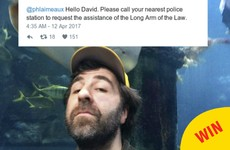 The Australian police had the best comeback to David O'Doherty's plea for help on Twitter