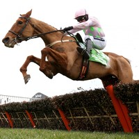 Annie Power set for return as Mullins rolls out big guns for Punchestown