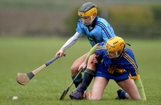 Camogie league final pairings decided as Cork and Dublin advance