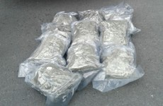 Two men arrested as gardaí seize cannabis worth €740k