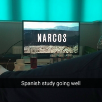 UL students have a brilliant annual tradition of documenting their procrastination during exams