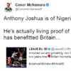 An Irish journalist has gone insanely viral for shutting down a pro-Brexit group's tweet about a boxer