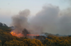 Firefighters tackle another weekend of massive gorse fires