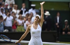 Andy Murray expects Sharapova to be given Wimbledon wildcard if needed