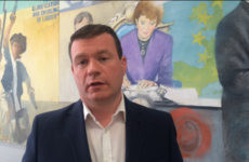 'Garda HR boss has done a great service to the country' - Alan Kelly