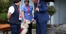 Wreaths, the Taoiseach and a very good dog: a day spent with Prince Charles