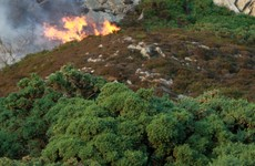 Gorse fire which was visible across Dublin put under control last night