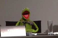 Watch: Kermit responds to Fox News claim that Muppets push liberal agenda