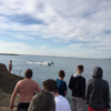 Forty Foot swimmers raise alarm after jet skis and powerboats cause havoc