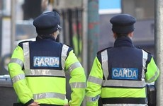 New specially trained garda units to investigate child abuse and domestic violence