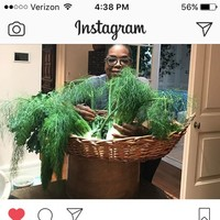 Jamie Oliver jumped into Oprah's Instagram comments to correct her on the herb in a photo - and call her 'mate'