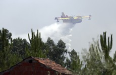 Prime Minister demands 'immediate answers' as forest fires continue to rage in Portugal