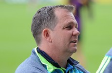 Davy Fitzgerald '100% considering' watching Wexford's Leinster final from high in the stands