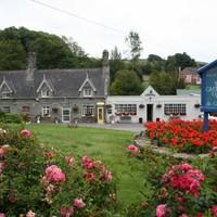 Cork village named overall winner of Ireland's Best Kept Town Awards