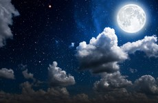 Poll: Do you find it hard to sleep on these bright nights?