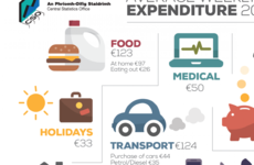 Every week, the average Irish household spends €845. Here's where the money goes