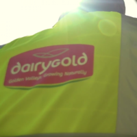 Dairygold's CEO: 'We can't get our heads around the thought of a hard Brexit'