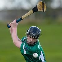 Mulcahy shoots 15 points as Limerick deny three-goal Devane and Tipp