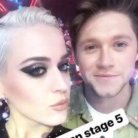 Katy Perry has called Niall Horan a 'stage 5 clinger'...it's The Dredge