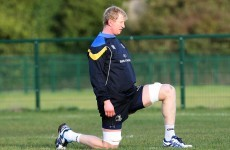 On the mend: Leinster happy with Cullen's progress following surgery