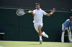 Djokovic shrugs off McEnroe's Tiger comparison