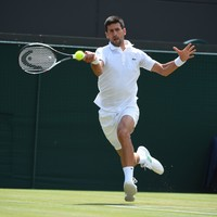 Djokovic shrugs off McEnroe's Tiger comparison
