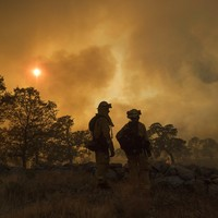 Houses destroyed in 17 wildfires as California gripped by record-breaking heatwave