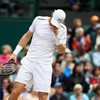 Hobbling Murray sent crashing out of Wimbledon by Querrey