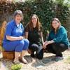 Award-winning fairy garden donated to children's ward at Portiuncula Hospital