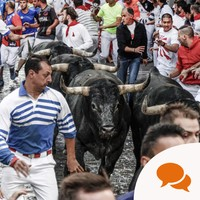 'If you go to Pamplona to be chased by a bull, you're participating in his long, painful death'
